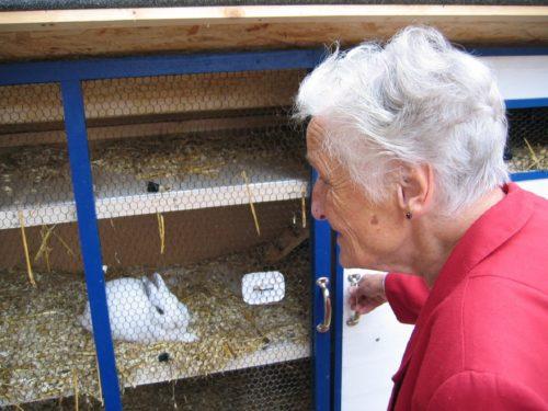 La Pet Therapy in Casa di Riposo