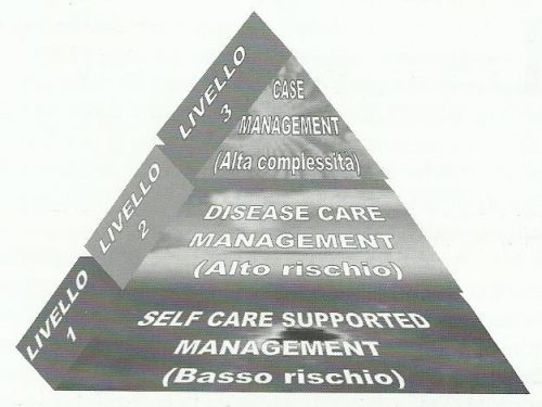 Modello per la gestione del paziente nella long term care: The Kaiser Permanent Triangle