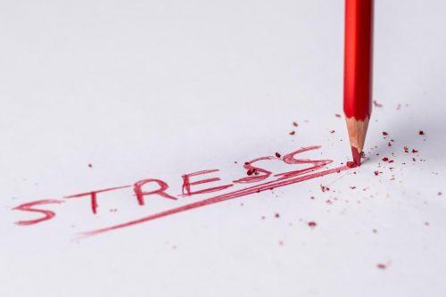 La valutazione dello stress del caregiver nella persona con demenza: revisione narrativa della letteratura